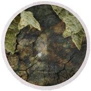 Tree Memories # 7 Round Beach Towel by Ed Hall