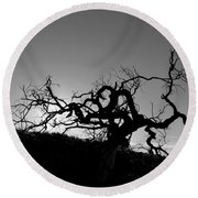 Round Beach Towel featuring the photograph Tree Of Light Silhouette Hillside - Black And White  by Matt Harang