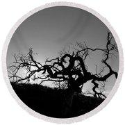 Tree Of Light Silhouette Hillside - Black And White  Round Beach Towel