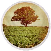 Round Beach Towel featuring the photograph Tree On Edge Of Field by Lyn Randle