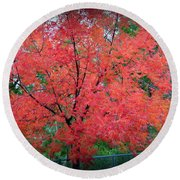 Round Beach Towel featuring the photograph Tree On Fire by AJ Schibig