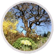 Tree Photo 991 Round Beach Towel