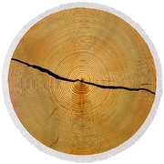 Tree Rings Round Beach Towel