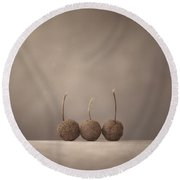 Tree Seed Pods Round Beach Towel