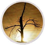 Tree Silhouette At Sundown Round Beach Towel
