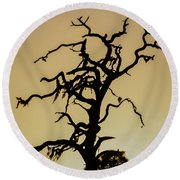 Tree Silhouette Round Beach Towel