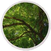 Tree Story 3 Round Beach Towel