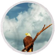Tree Top Eagle  Round Beach Towel