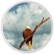 Tree Top Eagle  Round Beach Towel