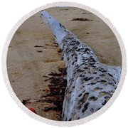 Tree Trunk And Shell On The Beach Full Size Round Beach Towel