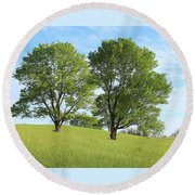 Round Beach Towel featuring the photograph Summer Trees 4 by Melinda Blackman