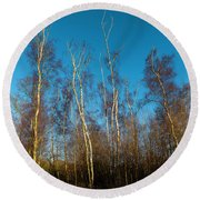 Trees And Blue Sky Round Beach Towel