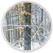 Trees In Snow Round Beach Towel