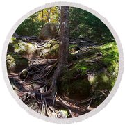 Trees - Mont Tremblant National Park Round Beach Towel