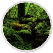 Round Beach Towel featuring the photograph Trees Of Mystery by TL Mair