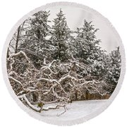 Trees Of Winter Round Beach Towel