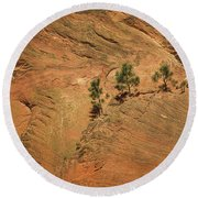 Trees On A Ledge Round Beach Towel