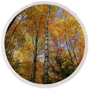 Trees On The Lincoln Woods Trail Round Beach Towel