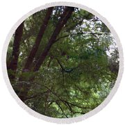 Trees Reflected In A Woodland Stream 2867 H_2 Round Beach Towel