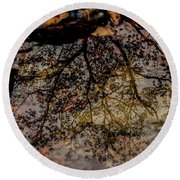 Round Beach Towel featuring the photograph Tree's Reflection by Iris Greenwell