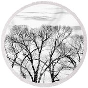 Round Beach Towel featuring the photograph Trees Silhouette Black And White by Jennie Marie Schell