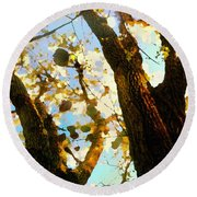 Treetop Abstract-look Up A Tree Round Beach Towel