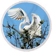Treetop Egret Round Beach Towel