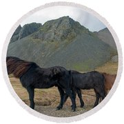 Tri - Color Icelandic Horses Round Beach Towel by Dubi Roman