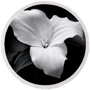 Round Beach Towel featuring the photograph Trillium Black And White by Christina Rollo