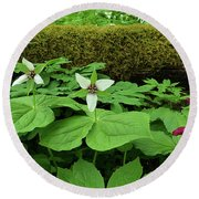 Trillium By Log Round Beach Towel