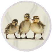 Triple Ducklings Round Beach Towel