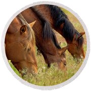 Triple Mustang Treat Round Beach Towel