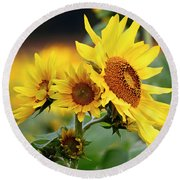Triple Sun Beauties Round Beach Towel