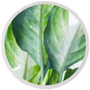 Tropic Abstract  Round Beach Towel