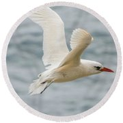 Tropic Bird 2 Round Beach Towel by Werner Padarin