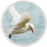 Tropic Bird 4 Round Beach Towel