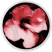 Round Beach Towel featuring the photograph Tropical Beauty by Mary Ellen Frazee