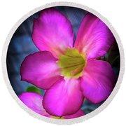Tropical Bliss Round Beach Towel by Karen Wiles