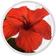 Tropical Bloom. Round Beach Towel