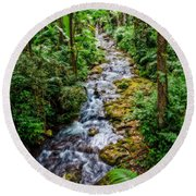 Round Beach Towel featuring the photograph Tropical Forest Stream by Christopher Holmes