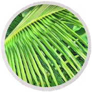 Tropical Green Round Beach Towel by Ann Powell