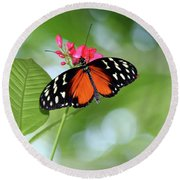 Tropical Hecale Butterfly Round Beach Towel