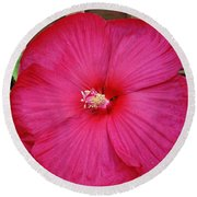 Tropical Hibiscus In Red Round Beach Towel by Marsha Heiken
