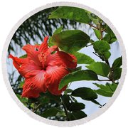 Tropical Hibiscus Round Beach Towel by Mary Haber