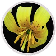 Trout Lily 2 Round Beach Towel
