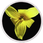 Trout Lily Round Beach Towel