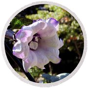 Round Beach Towel featuring the photograph Trumpet Flower by Melissa Messick
