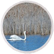 Round Beach Towel featuring the photograph Trumpeter Swan 0967 by Michael Peychich