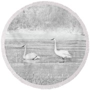 Round Beach Towel featuring the photograph Trumpeter Swan's Winter Rest Gray by Jennie Marie Schell
