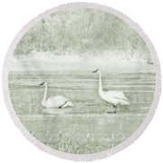 Round Beach Towel featuring the photograph Trumpeter Swan's Winter Rest Green by Jennie Marie Schell